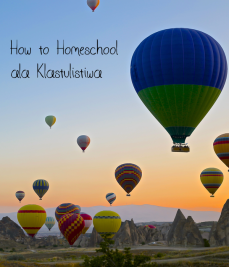 how-to-homeschool-ala-klastulistiwa.jpg